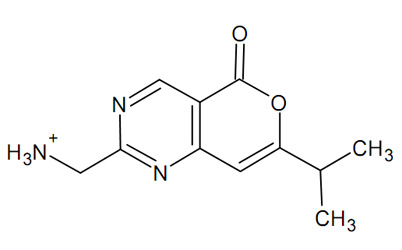 Teach Me More How To Draw Molecule